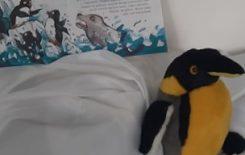 Więcej o: Dzień Pingwina w bibliotece w Krzyworzece
